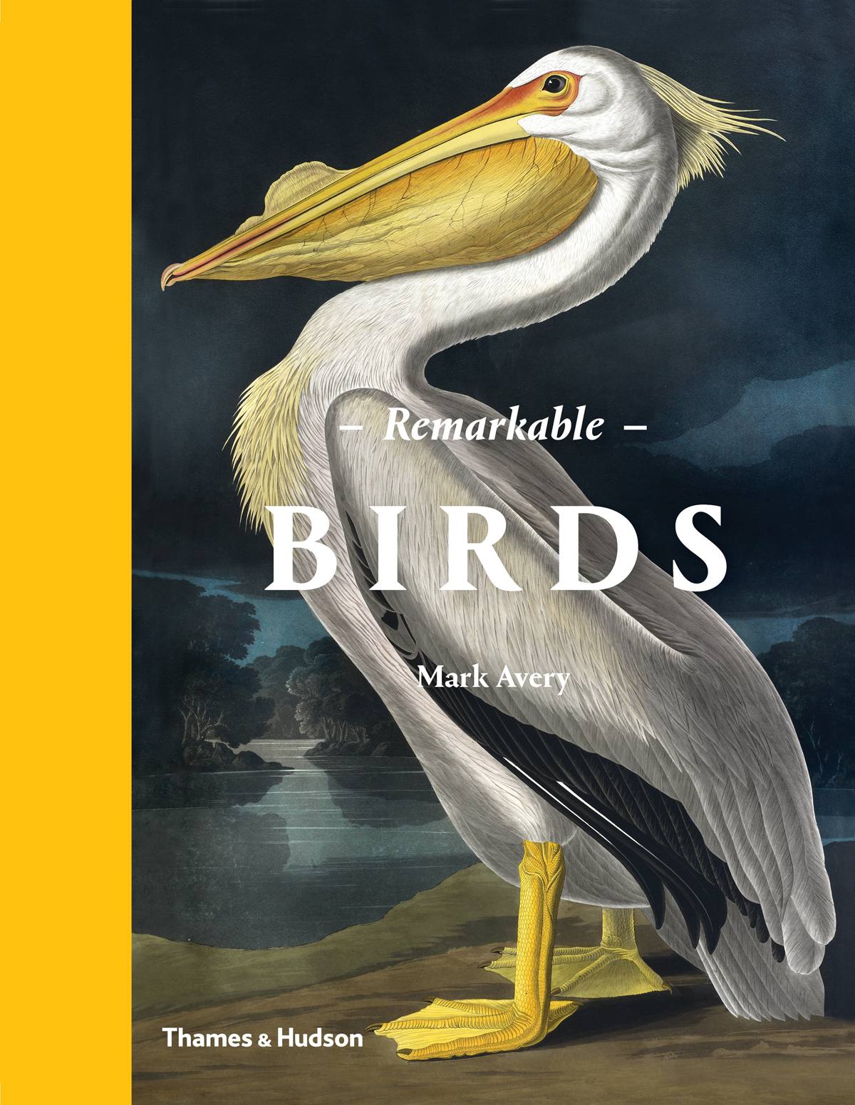 Image result for Remarkable Birds by Mark Avery