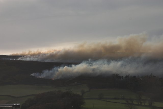 Heather burning Great Hograh moor. Photo: Colin Grice
