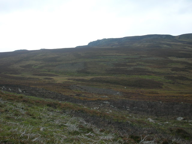 Grouse moor showing patchwork of heather of different ages. Photo: Ailith Stewart
