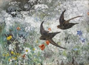 Bruno Liljefors, Common Swifts, 1886, via wikimedia commons