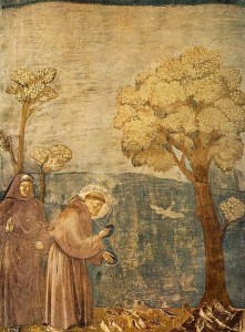 St Francis preaching to the birds, by Giotto (from Wikimedia)