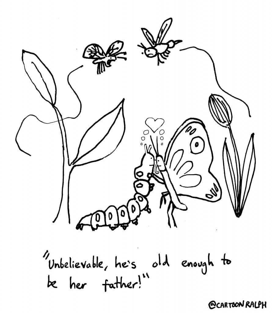 butterflydating