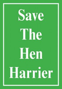 Save_the_Hen_Harrier_large