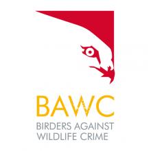 BAWC-220-x-220px