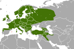 Pine Marten range. IUCN Red List of Threatened Species, species assessors and the authors of the spatial data. [CC BY-SA 3.0 (http://creativecommons.org/licenses/by-sa/3.0)], via Wikimedia Commons