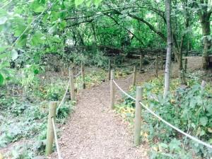 Camley Nature Park (C) Emma Websdale