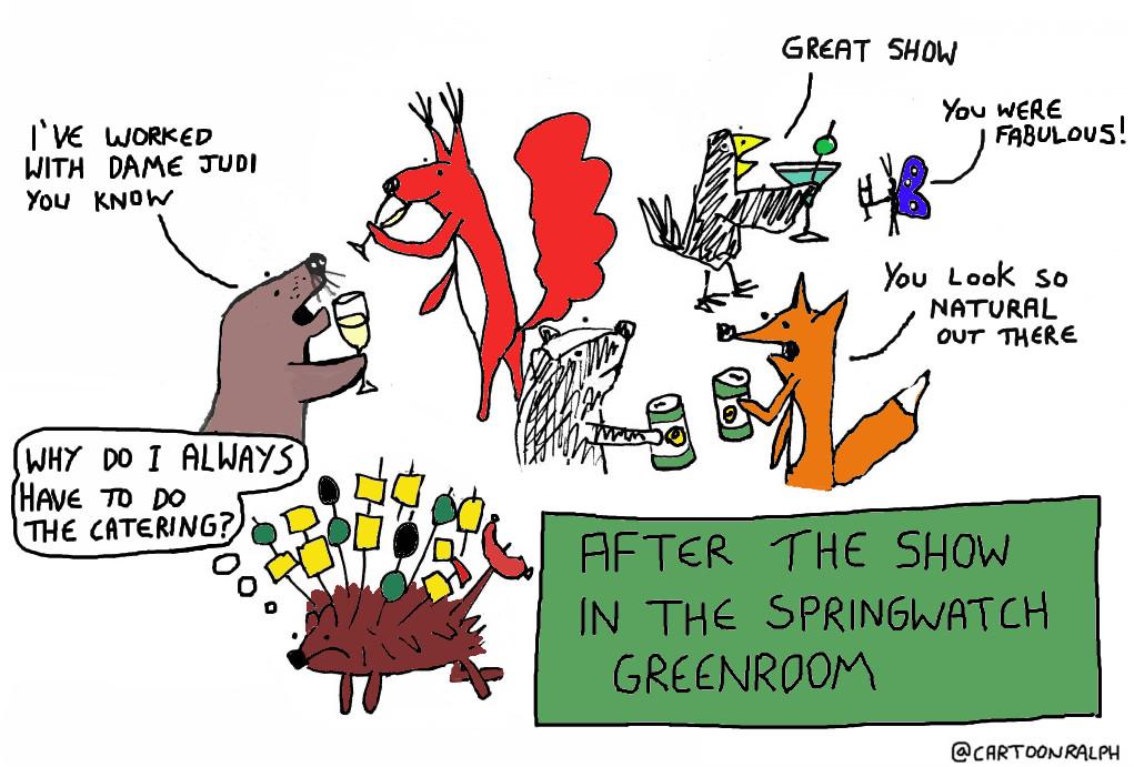 springwatchgreenroomcolour