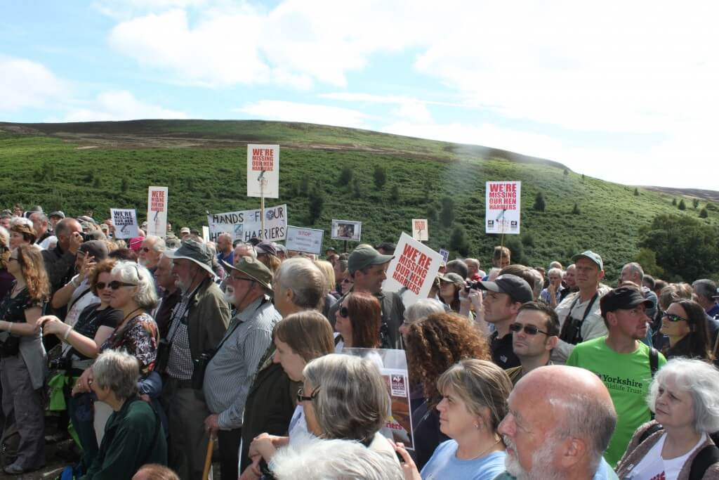 Photo: Ruth Tingay. Goyt Valley crowd