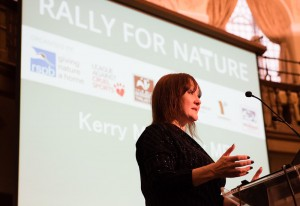"""Rally for Nature, London, appealing to MPs to put nature higher up the political agenda. Rally at Church House Conference Centre, London SW1 followed by walk to Parliament. Joint event between RSPB, The Wildlife Trusts, Mark Avery and the League Against Cruel Sports. Morning Session. Kerry McCarthy, Labour Party MP for Bristol East. 9th December 2014. Photo: Eleanor Bentall"""