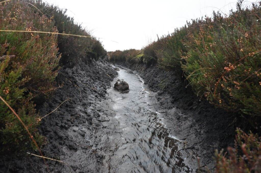 Drainage ditch on Walshaw Moor
