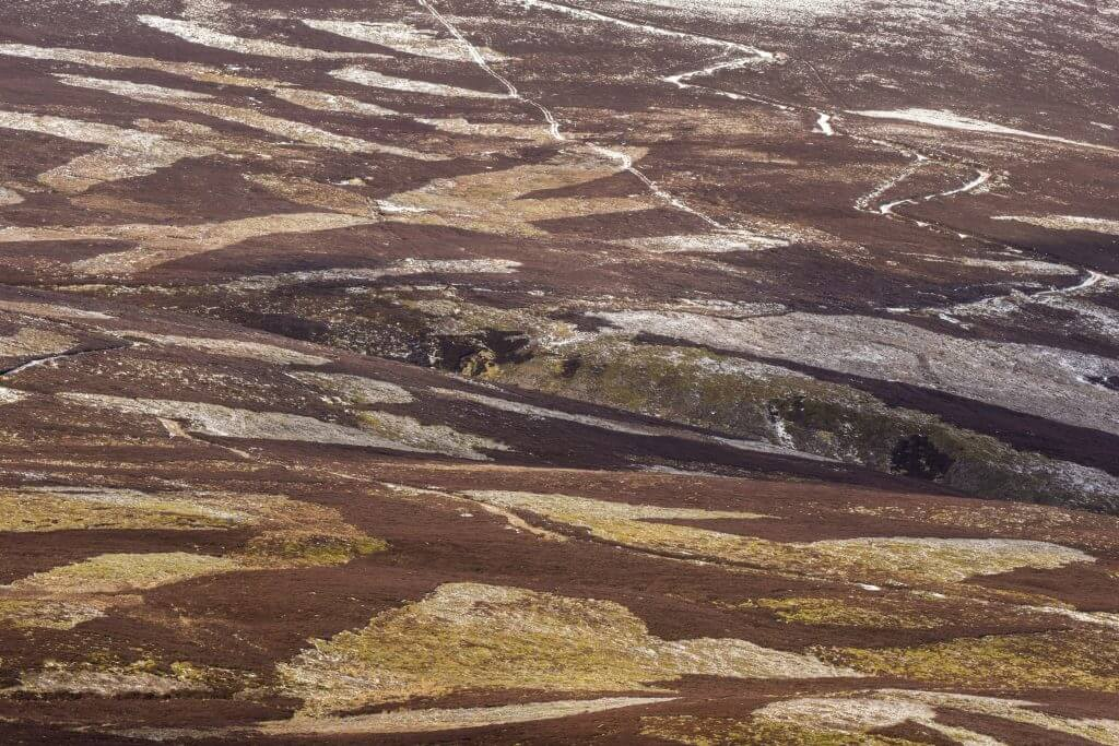 Patchwork of upland heather moorland on grouse shooting estate, northern Scotland, northern Scotland