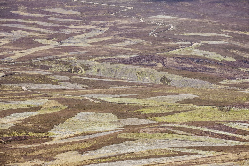 The British uplands as God intended them? Photo: Peter Cairns