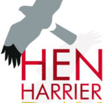 Hen Harrier Day online tomorrow